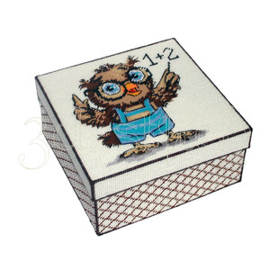 """Набор для вышивания на пластиковой канве КР016 Коробка """"Умный совенок"""""""""""